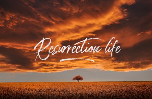 resurrection life copy