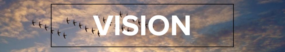 vision hidden arrows