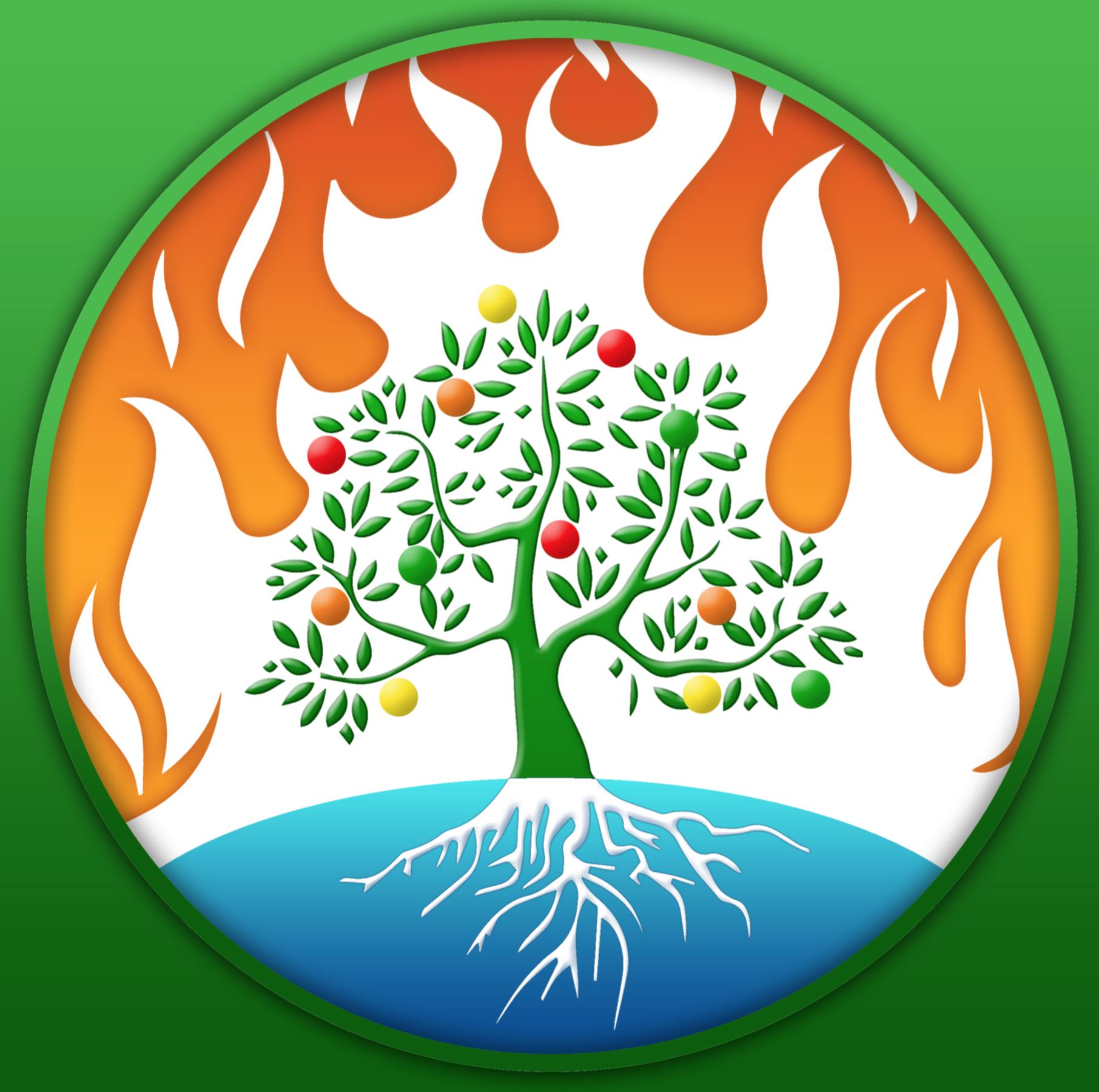 blazing trees