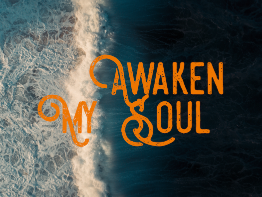 awaken my soul web