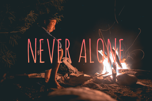 never alone web