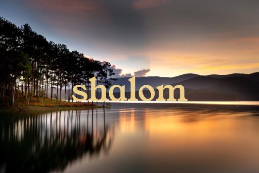 shalom2 web