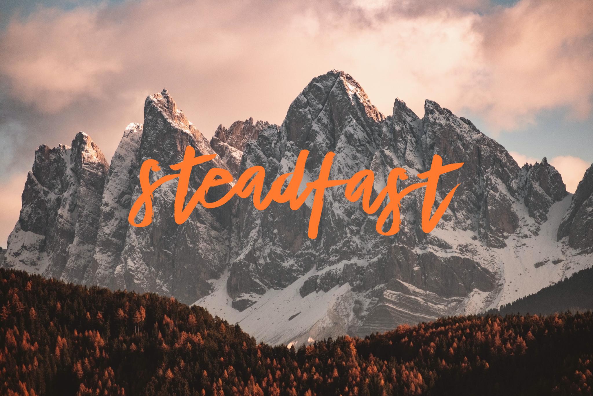 steadfast2